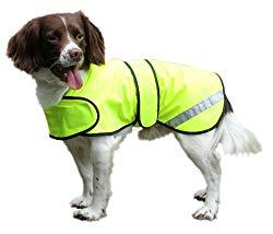Dog Hi-Vis Jacket